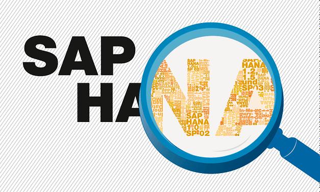 SAP HANA : een visie veeleer dan pure in-memory